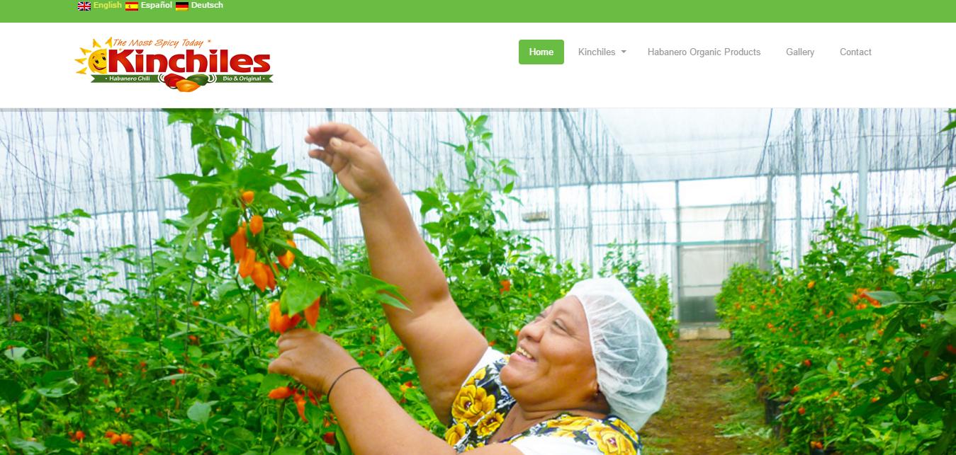 Kinchiles Organic Habanero – http___kinchiles.com_